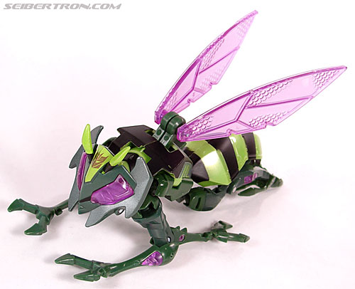 Transformers Animated Waspinator (Wasp) (Image #37 of 110)