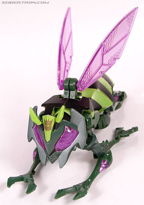 Transformers Animated Waspinator (Wasp) (Image #38 of 110)