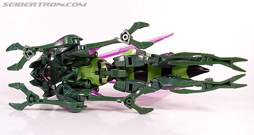 Transformers Animated Waspinator (Wasp) (Image #41 of 110)