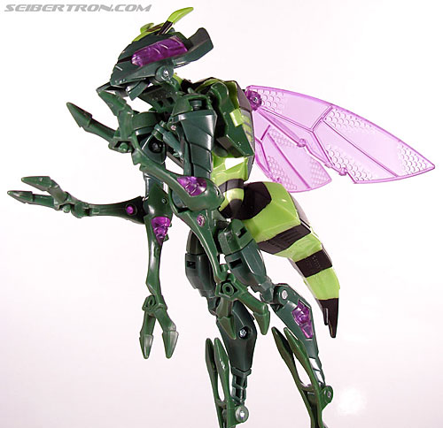 Transformers Animated Waspinator (Wasp) (Image #42 of 110)