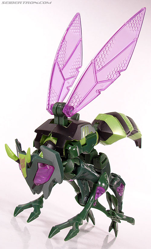 Transformers Animated Waspinator (Wasp) (Image #43 of 110)