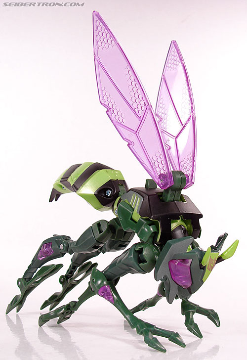 Transformers Animated Waspinator (Wasp) (Image #44 of 110)