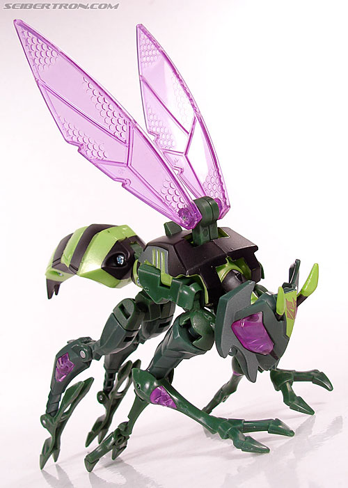 Transformers Animated Waspinator (Wasp) (Image #45 of 110)