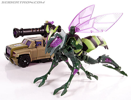 Transformers Animated Waspinator (Wasp) (Image #46 of 110)