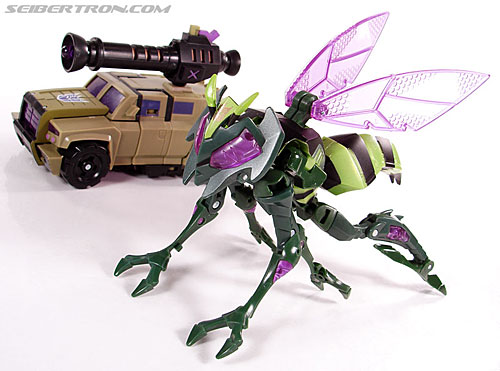Transformers Animated Waspinator (Wasp) (Image #47 of 110)