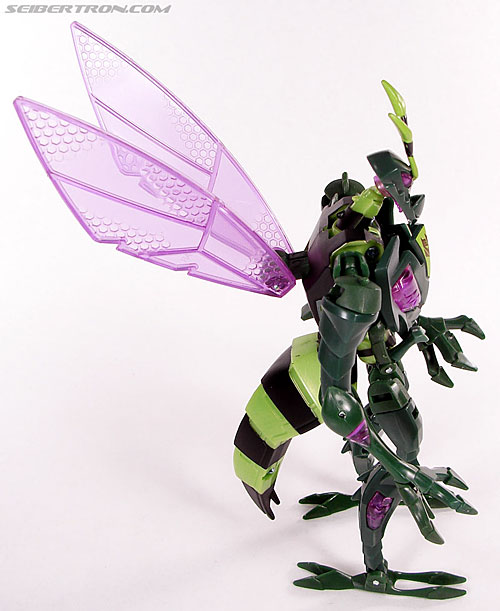 Transformers Animated Waspinator (Wasp) (Image #60 of 110)