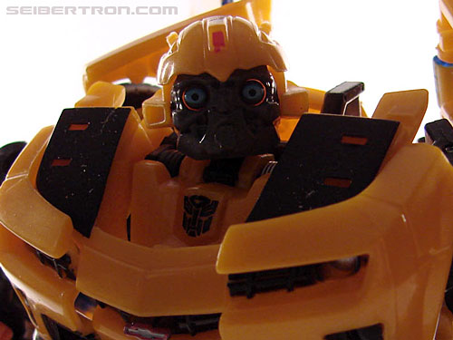 Transformers Revenge of the Fallen Alliance Bumblebee (Image #84 of 109)