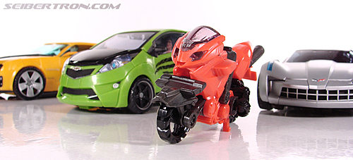 Transformers Revenge of the Fallen Arcee (Image #6 of 86)