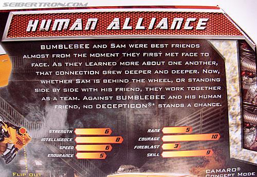Transformers Revenge of the Fallen Bumblebee (Image #14 of 188)