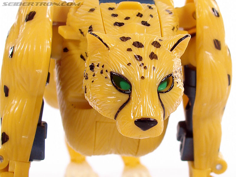 Transformers Universe - Classics 2.0 Cheetor (Image #24 of 124)