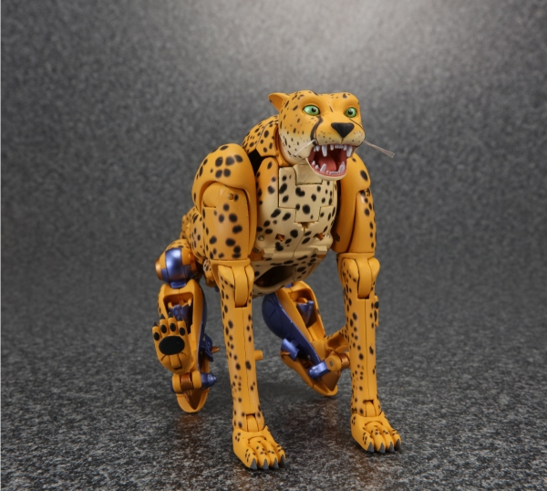 [Masterpiece] MP-34 Cheetor et MP-34S Shadow Panther (Beast Wars) 1470395826-mp-cheetor-06