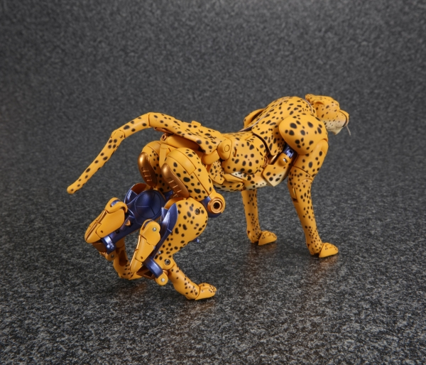 [Masterpiece] MP-34 Cheetor et MP-34S Shadow Panther (Beast Wars) 1470395826-mp-cheetor-09