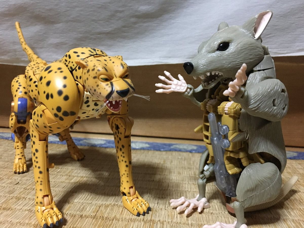 Transformers News: Masterpiece MP 34 Beast Wars Cheetor In Hand Images