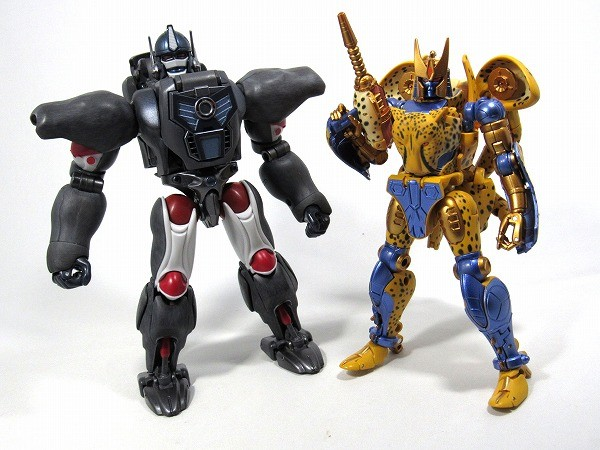 Transformers News: More In-Hand Images of Transformers Masterpiece MP-34 Cheetor, Comparison with MP32 Optimus Primal